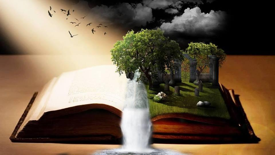 open book with trees and birds coming out