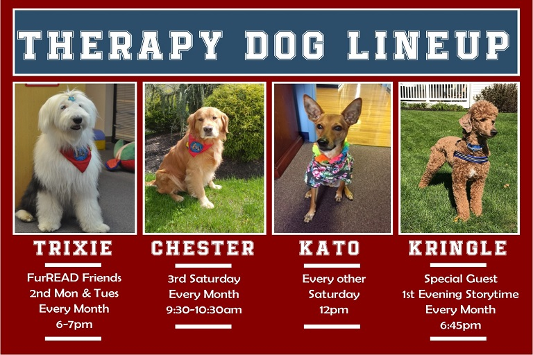 Jan Therapy Dogs